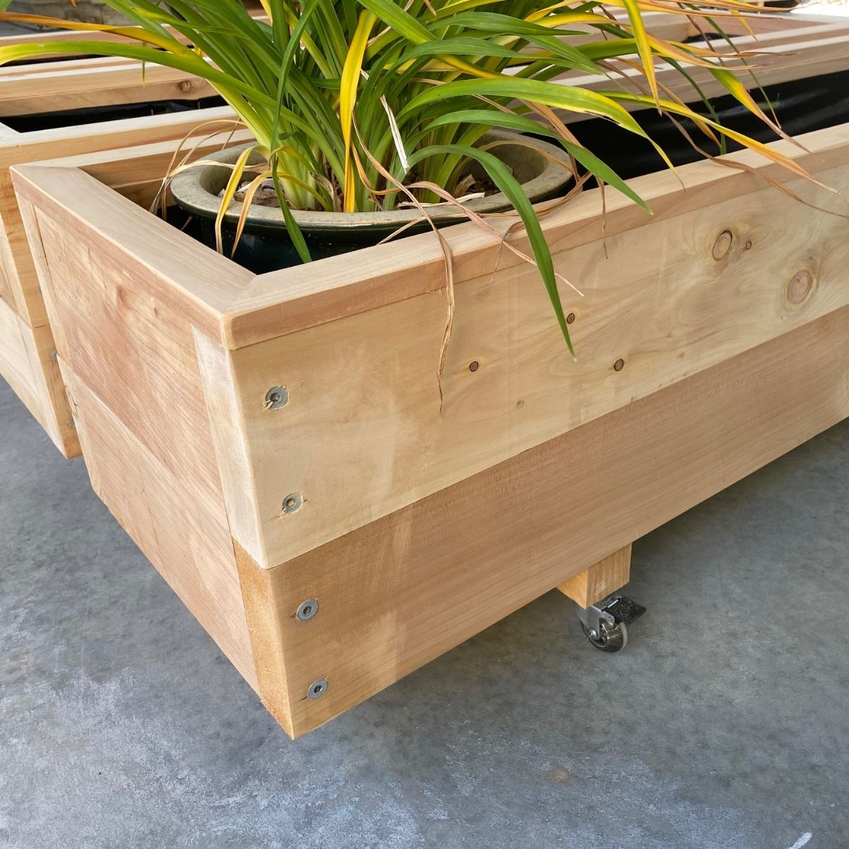 MACROCARPA PATIO PLANTER BOX: 375x330x1.0m